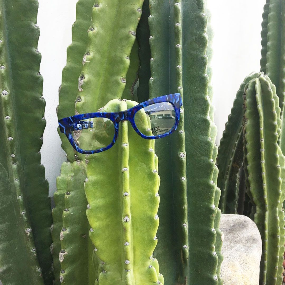 1a5da4af644 No prickly stems on our  GX023 style 🌵   gx by Gwen Stefani eyewear!  Fashionable