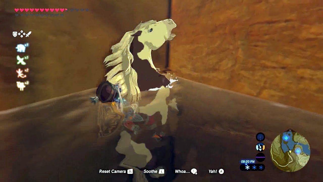 Legend Of Zelda Breath Of The Wild Messing Around 5 Legend Of Zelda Breath Of The Wild Wild