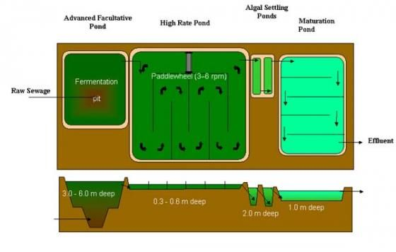 Water Resources Management and Water Quality Protection ... |Wastewater Nutrient Cycle