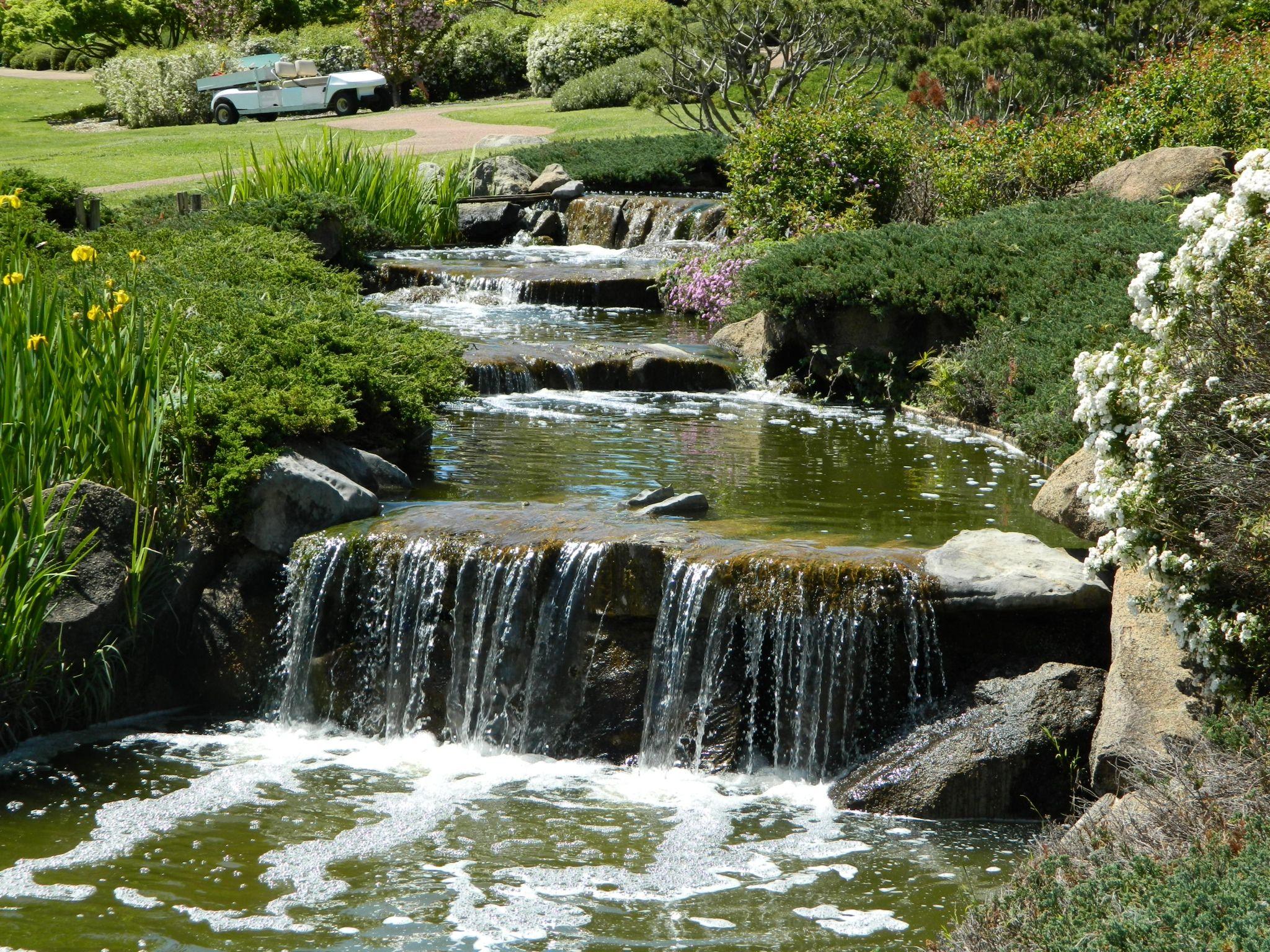 f0bbaadb092d5ecaf093ecd533143088 - Best Time To Visit Cowra Japanese Gardens