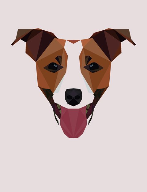 Jack Russell. Illustration © 2012 Mat Mabe.