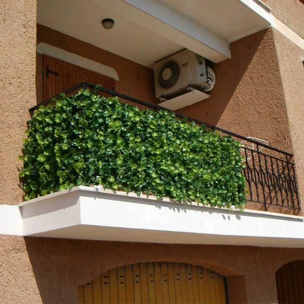 Photo of Cómo elegir las plantas para mi balcón – Trepadoras