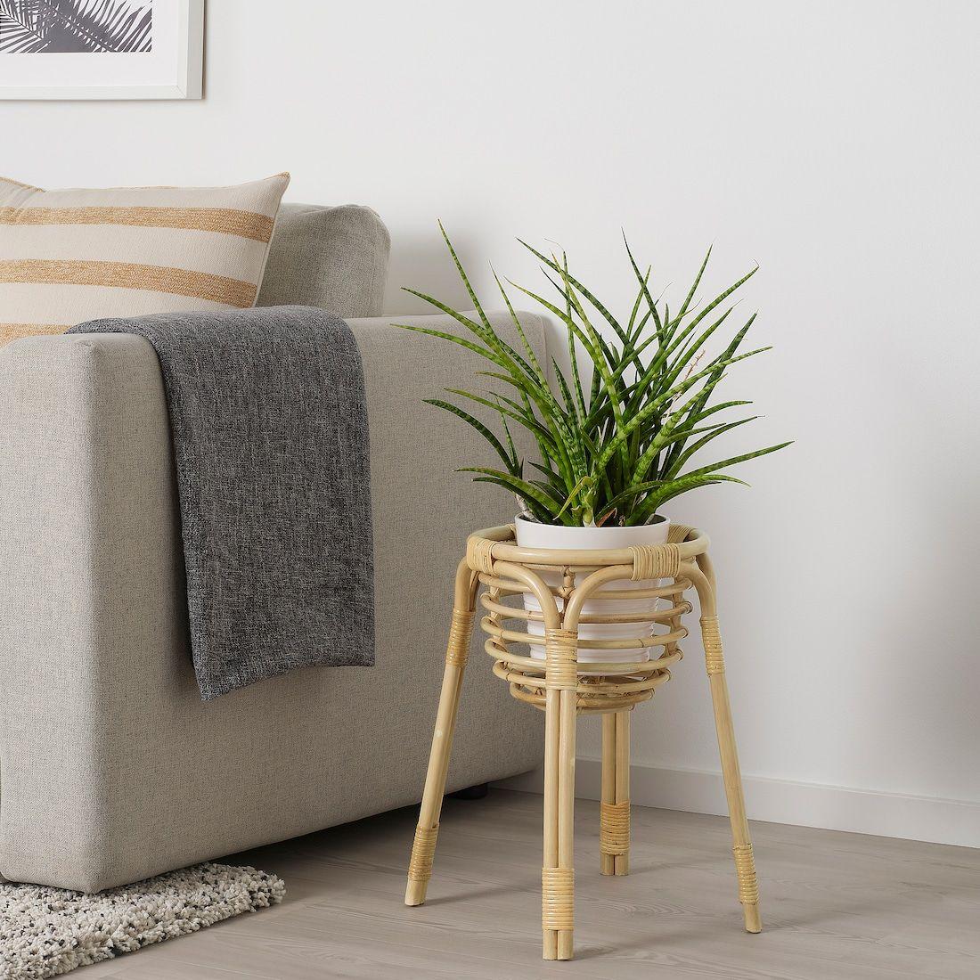 Buskbo Kukkajalka Rottinkia Ikea Support Pour Plante Ikea Carrelage De Salle De Bains Moderne