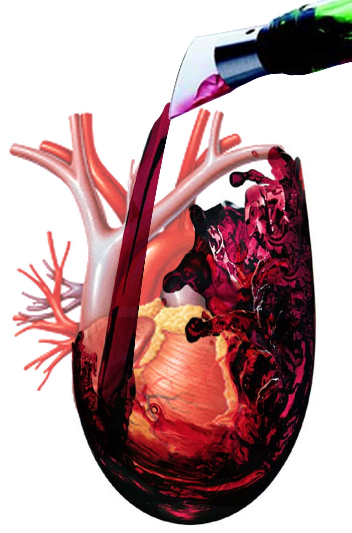 Pin En Health Benefits Of Red Wine Does Red Wine Protect Against Heart Disease