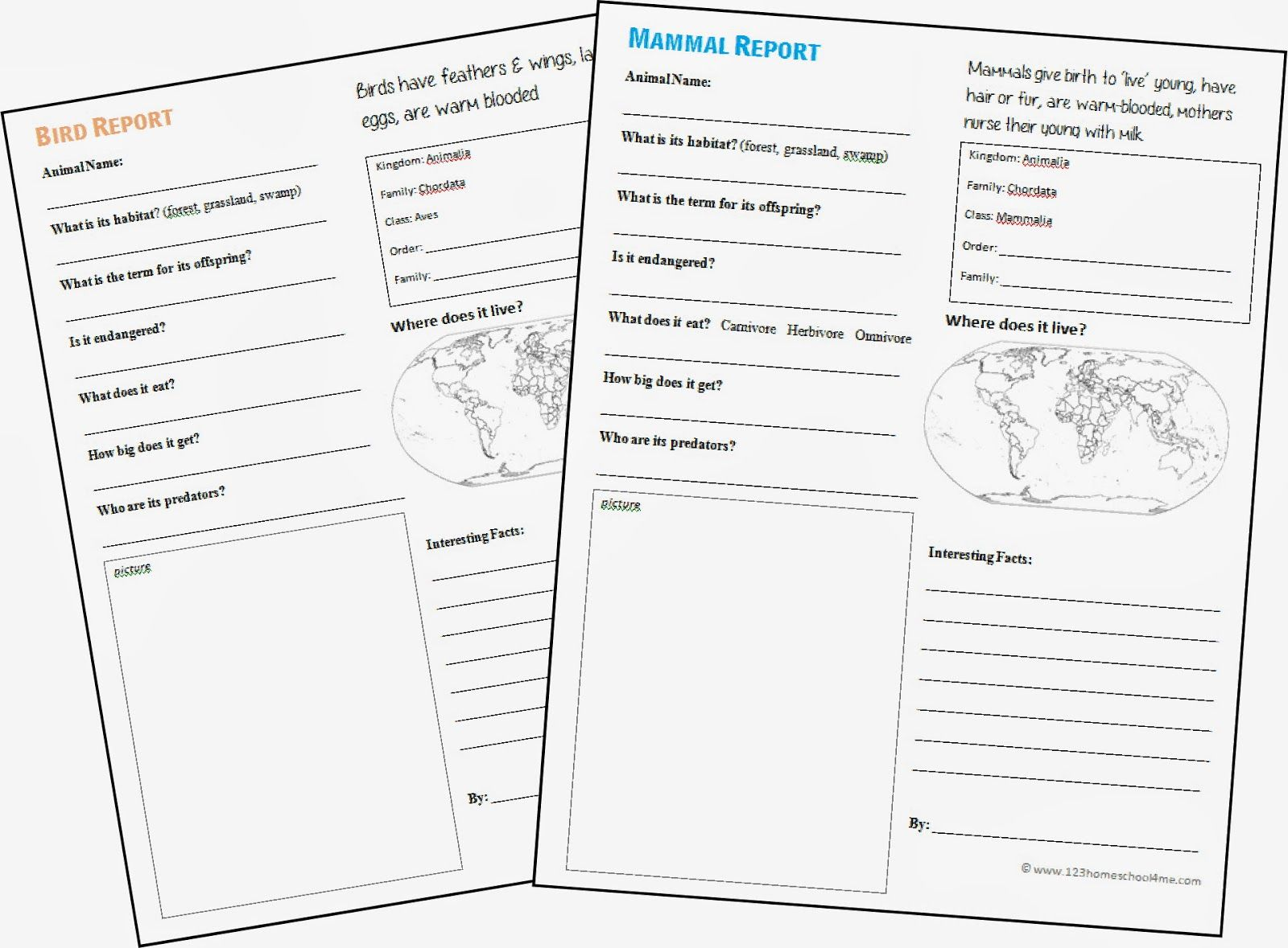 Free Animal Report Form Printable