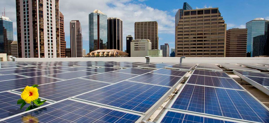 Pro Solar Hawaii Is One Of The Best Solar Panel Manufacturers Company In Usa Which Provides You Best Solar Panel Installation In Us Places To Visit Best Solar Panels Solar
