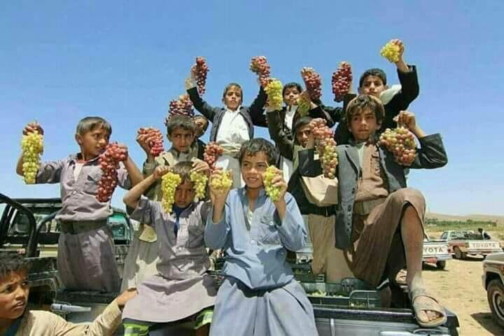 اولاد يمنيون يحملون عناقيد العنب اليمني اليمن Yemen Yemen Yemeni Ancient