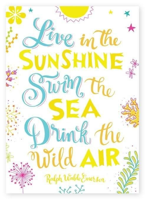 Merveilleux Live In The Sunshine · Summer QuotesSunshine ...