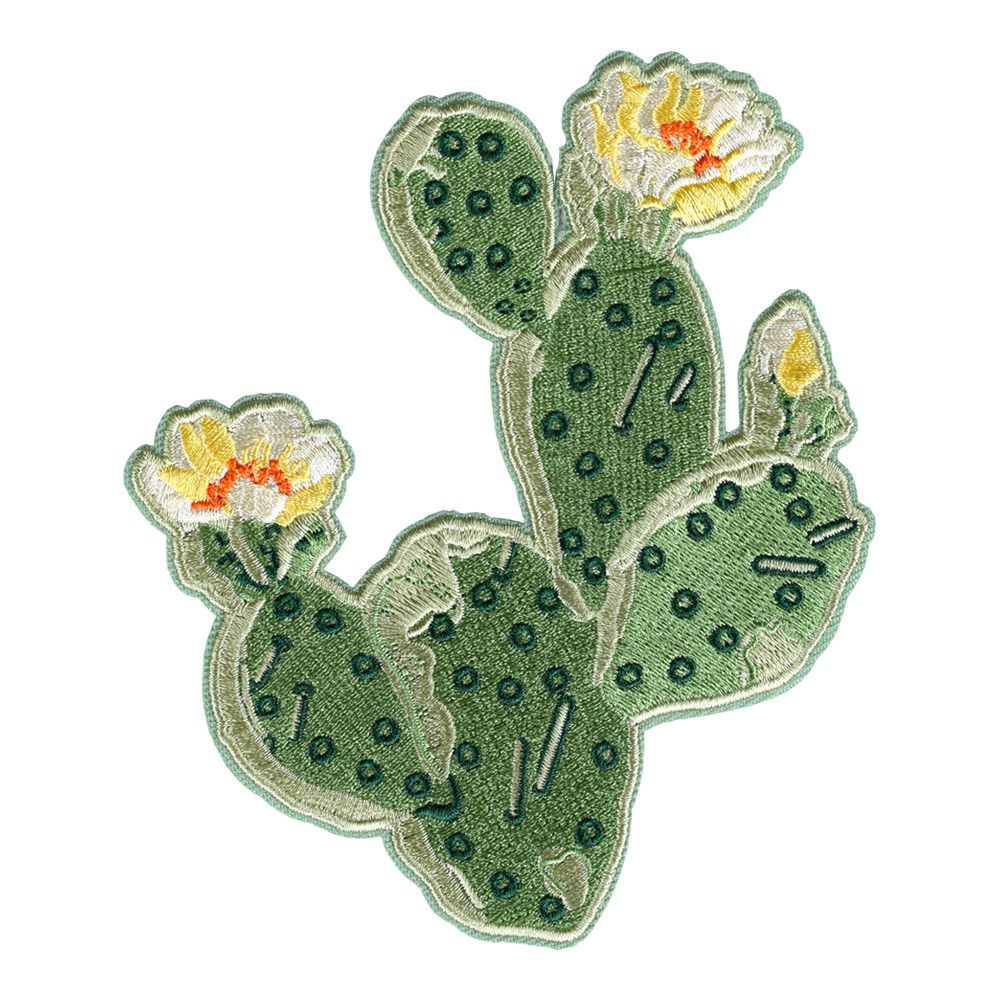 Prickly Pear Cactus Patch