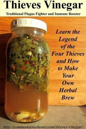 Thieves Vinegar - Herbal Remedy Historically Used To Fight The