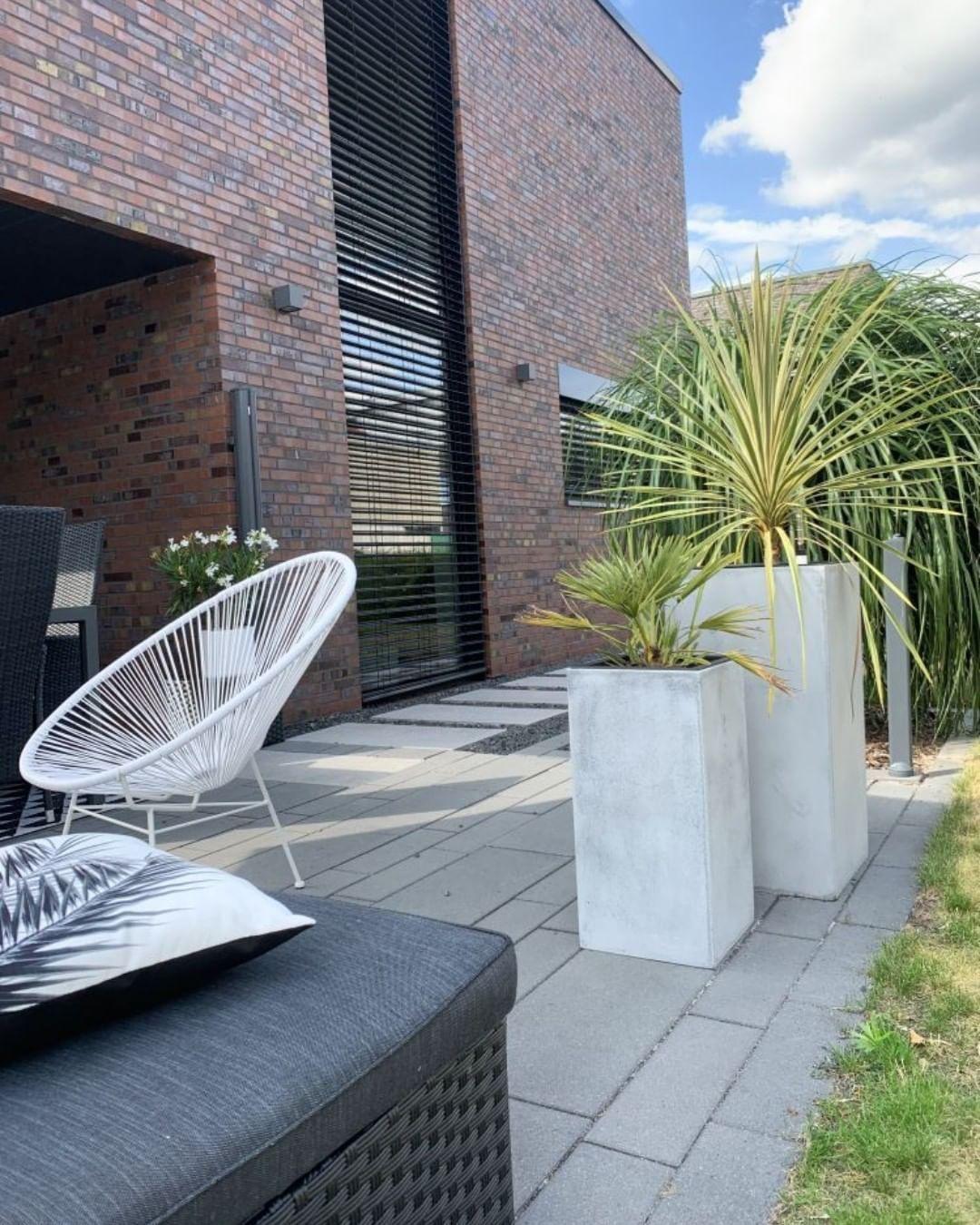 Pflanzkubel Hoch Gruner Sichtschutz Pflanzen Terrasse Balkon