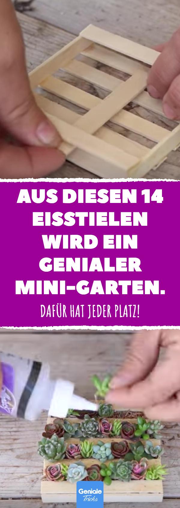 Photo of Aus 14 Eisstielen wird Mini-Garten.