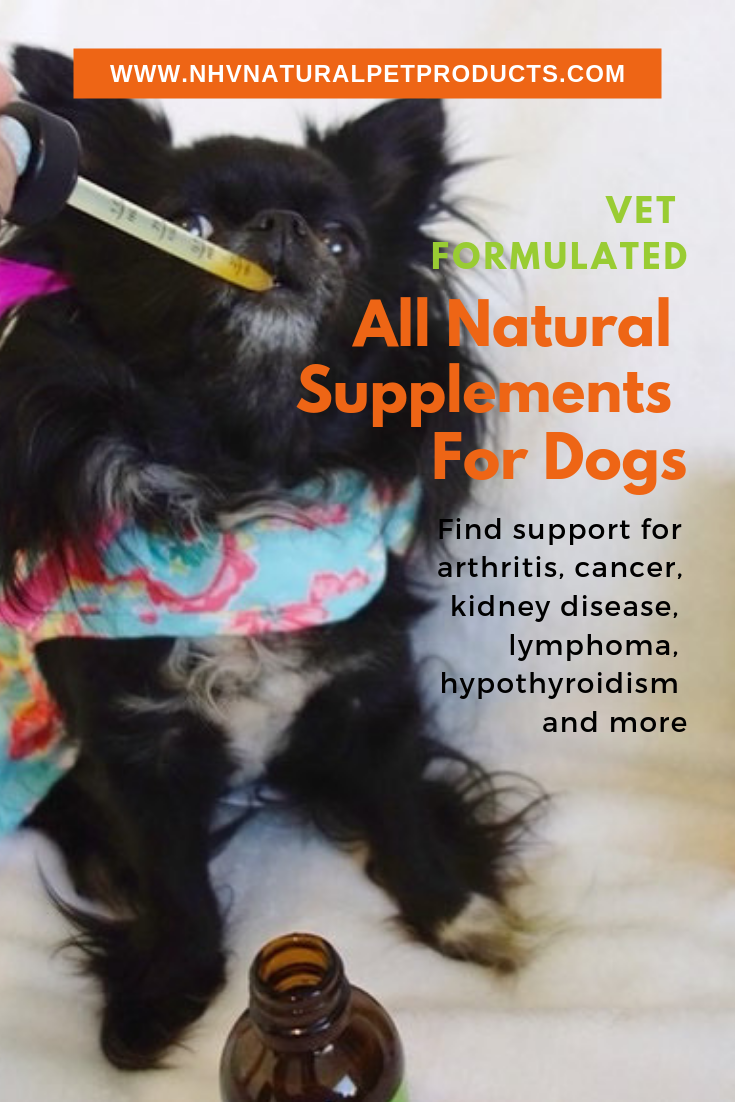 All Natural Supplements And Remedies For Pets Vet Formulated To