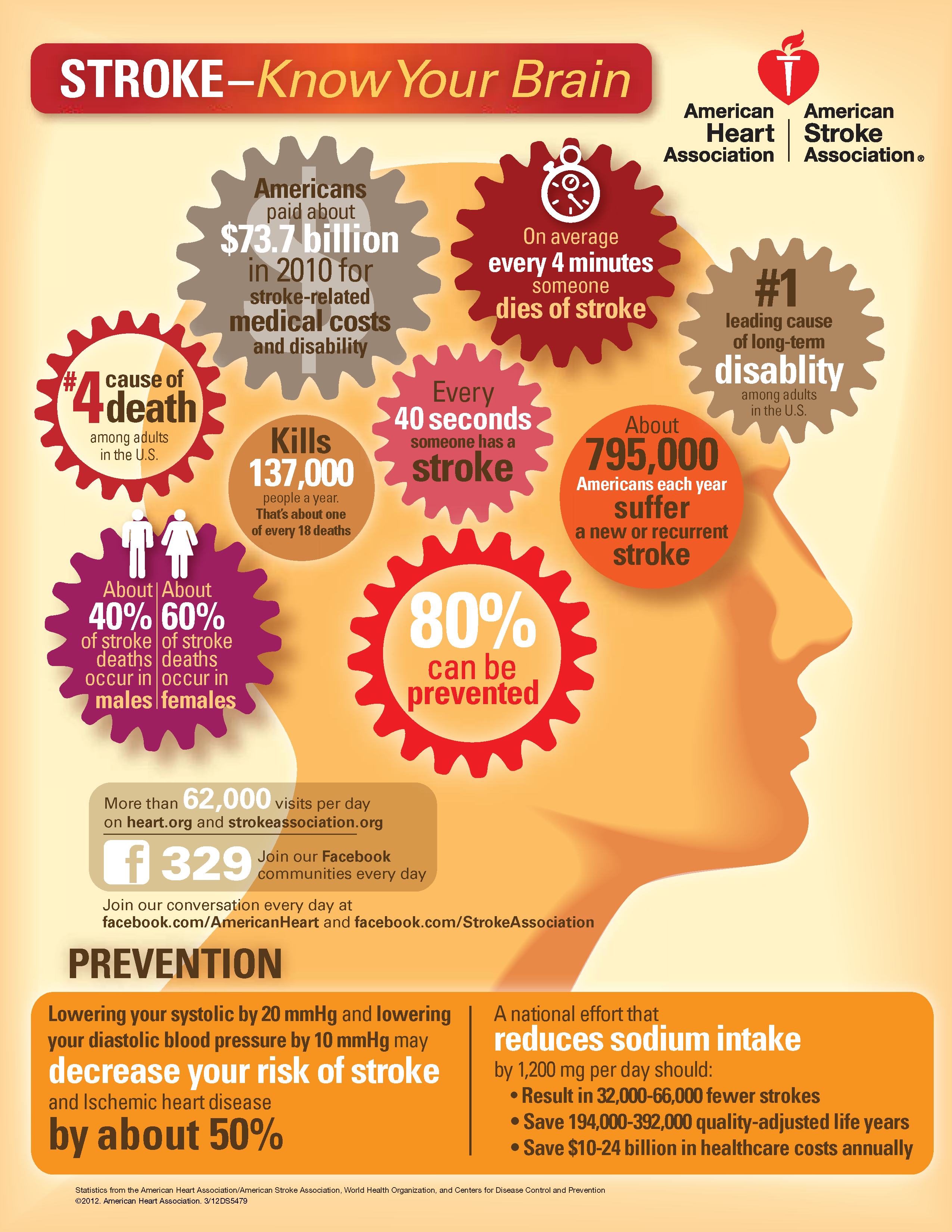 Know Your Brain Americanstrokemonth Stroke Infographic Health Brainhealth Infographic Health Health Health And Wellness