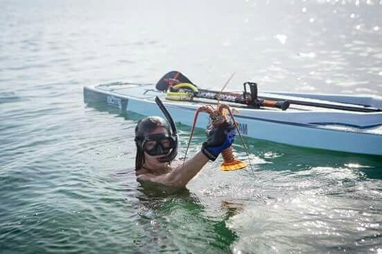 Bote Rackham Paddle Board Sup Paddle Board Paddle Boarding Sup Paddle