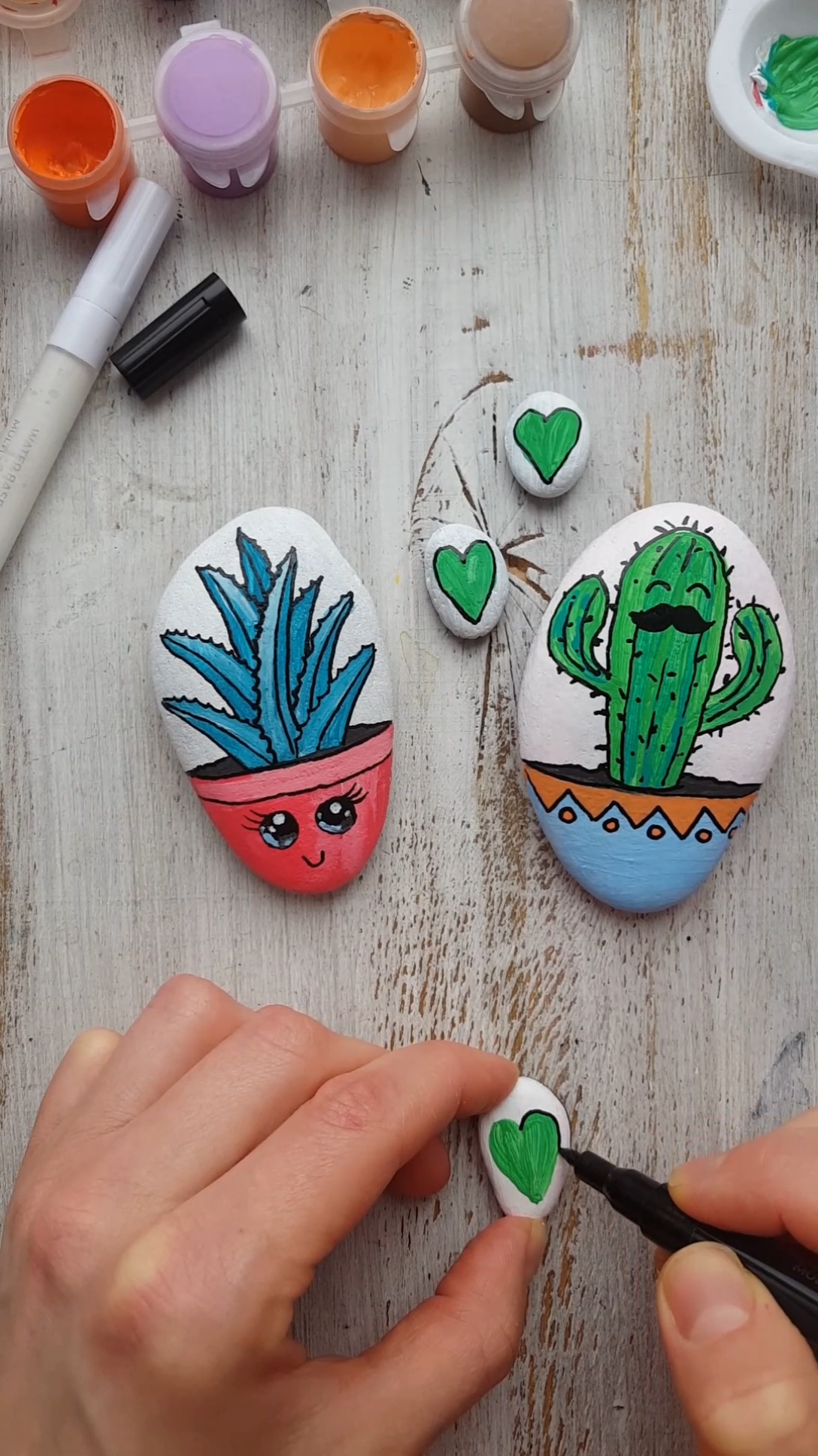Lovely succulents rock painting