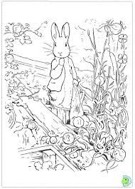 beatrix potter coloring pages - Google zoeken   Embroidery Critters ...