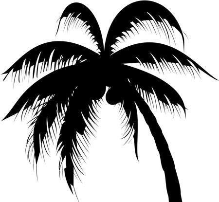 450 121117709 Palm Tree Jpg 450 415 Tree Tattoo Designs