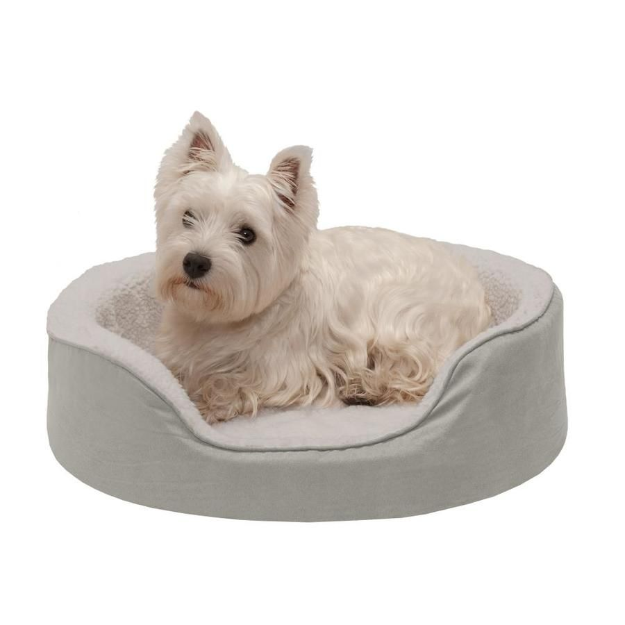 Small Puppy Bed Price 9 95 Free Shipping Dog Pets Dog Pet Beds Kitten Beds Dog House Bed