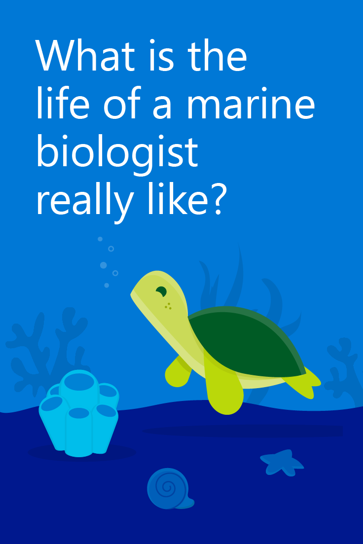Did You Ever Dream Of Growing Up And Becoming A Marine Biologist