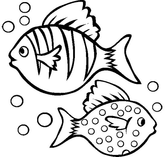 two fish coloring pages - Fish Coloring Pictures 2