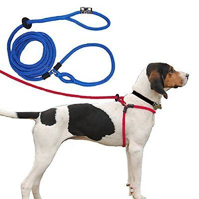 Harness Lead Escape Proof Reduces Pull Dog Harness Medium Large