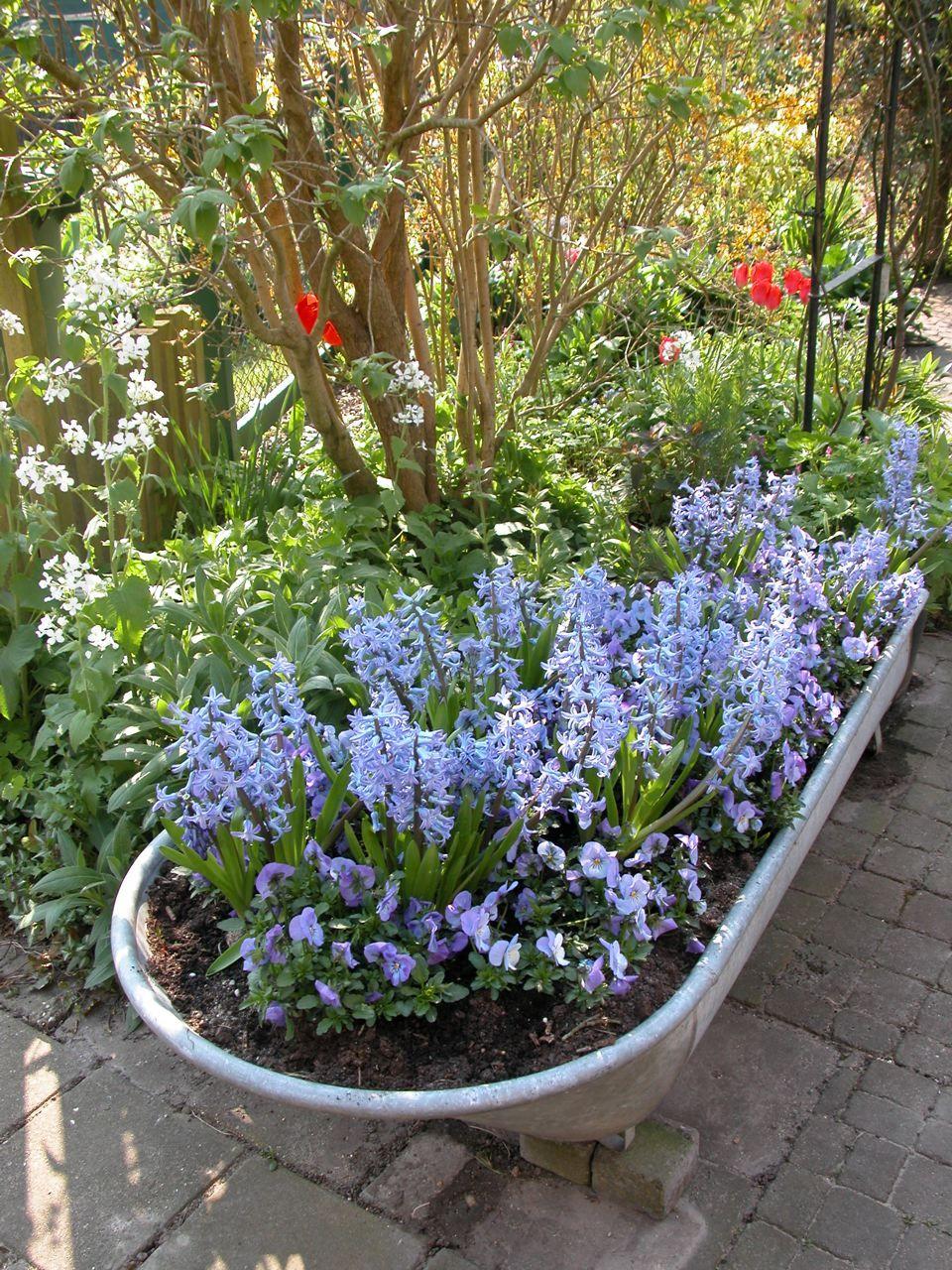 La Baignoire Ce N Est Plus Pour Les Bains Mais Pour Fleurir Le Jardin Paris Cote Jardin Jardins Grande Jardiniere Pot Jardin