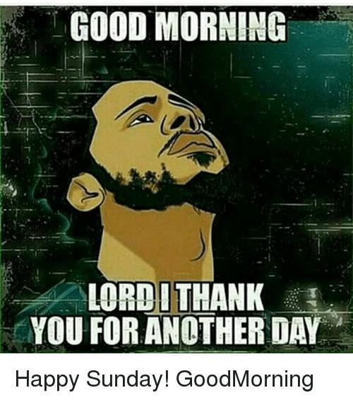 Best 32 Sunday Morning Memes Sunny Viral Morning Memes Sunday Morning Memes Memes