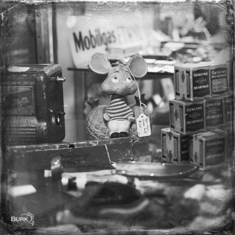 Vintage Mouse  www.brandonburkphotography.com