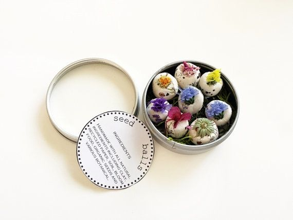 Seed Bombs FALL Wild Flower Seeds by RenaissanceBotanical on Etsy, $15.00
