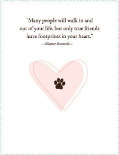 Commemorate The Loss Of A Pet With A Pet Sympathy Card, Pet Memorial Candle  Or