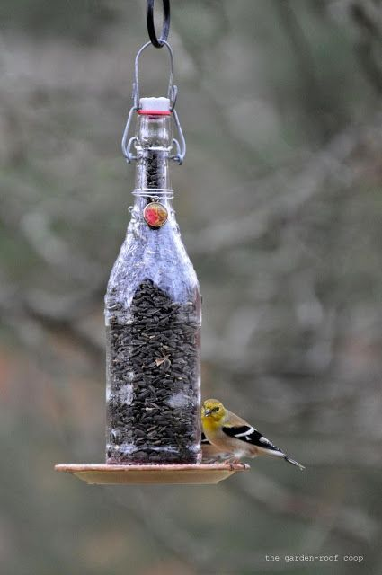 Bird Feeders From Wine Bottles Garden Birdhouses Diy