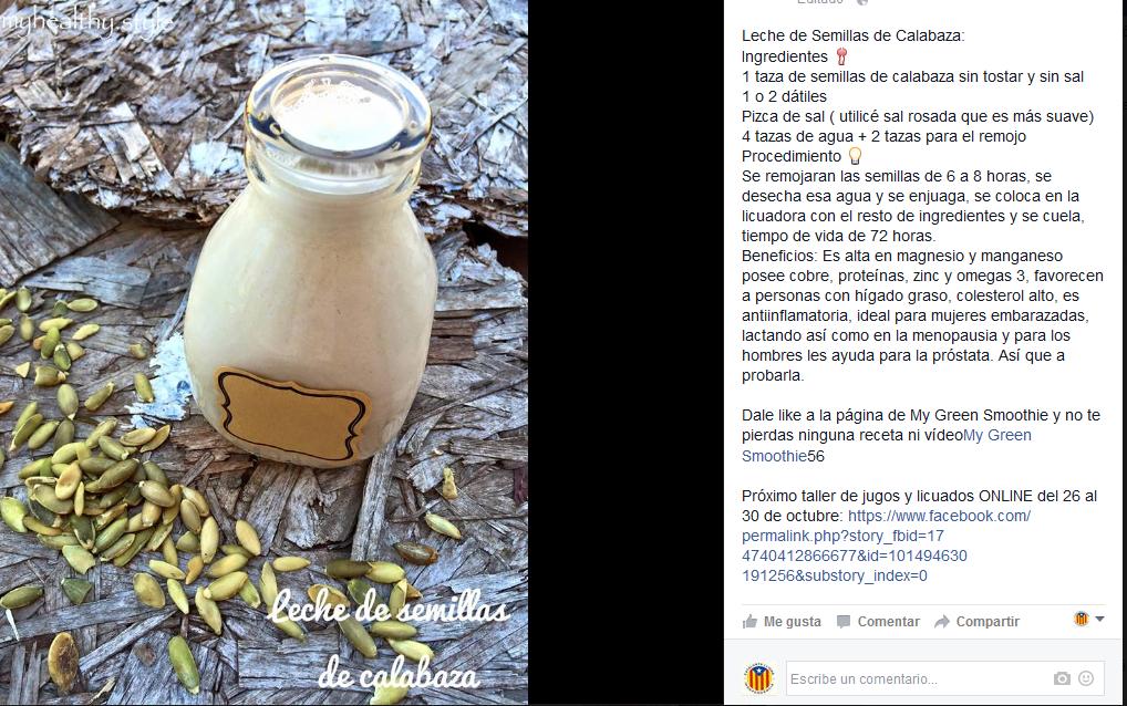 Lechada de semillas de calabaza / lechada de pepita verde / leche vegetal