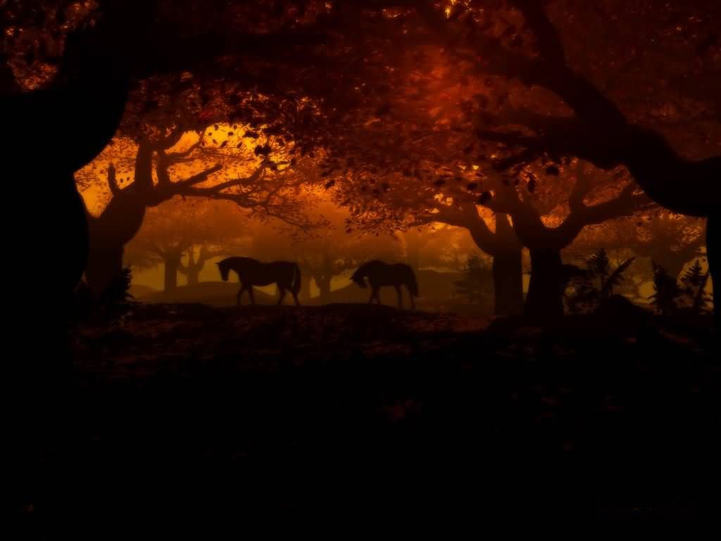 Cool Wallpaper Horse Forest - f0cb84d52f055db3e139bce994e13345  Perfect Image Reference_569142.jpg
