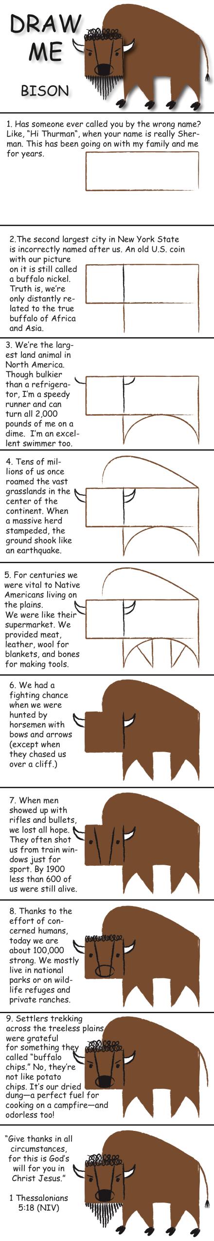 draw and learn american bison draw me pinterest malen lernen zeichnen und kunst. Black Bedroom Furniture Sets. Home Design Ideas