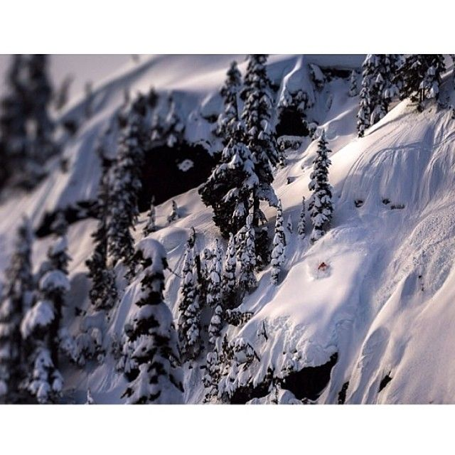 Photog @Robin O'Neill captures some pretty sweet images. This one of @eric_hjorleifson shredding the #whistler backcountry is proof. #regram #Padgram