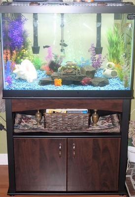 Aqueon 65 Gallon Aquarium Ensemble Aquariums Petsmart Petsmart Aquarium Fish Tank