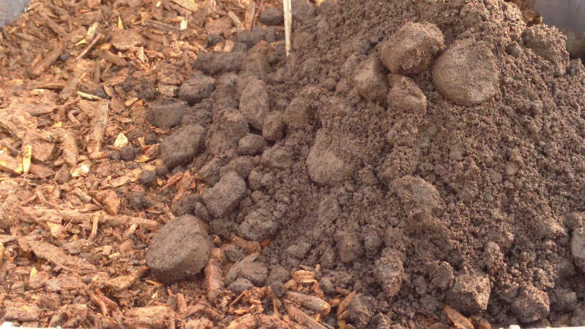Used Coffee Grounds Are A Great Free Resource To Put Work In Your Garden They Enrich The Soil With Nitrogen And Other Minerals Improve Structure