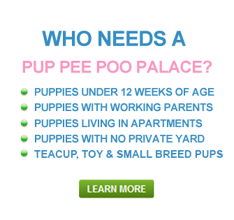 Great Examples Of People Who Need A Palace Great For Small Dogs