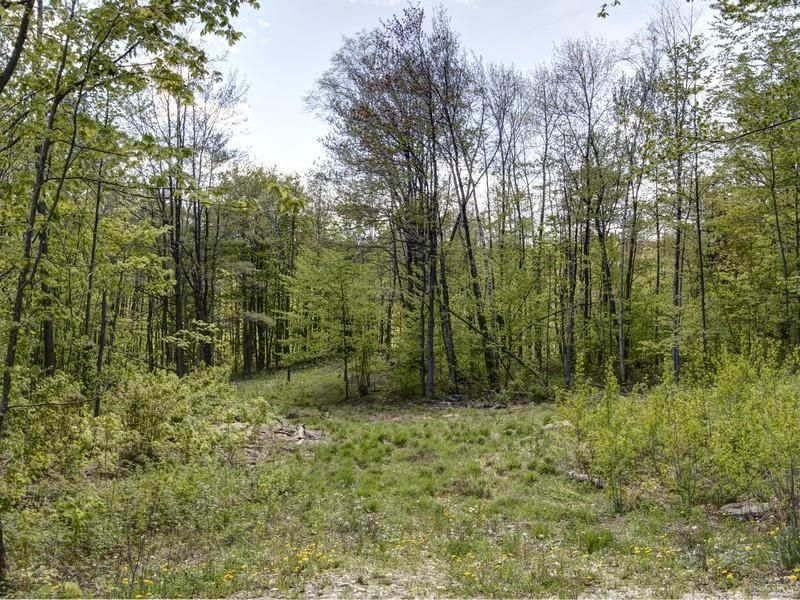Winhall, Vermont Real Estate Rolling topography with stone walls and central pond site. This property is subdivided into two state permitted 10+ acre lots.