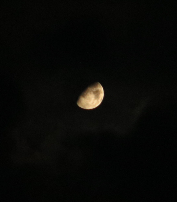 Gibbous moon on the eve of Autumn 2015