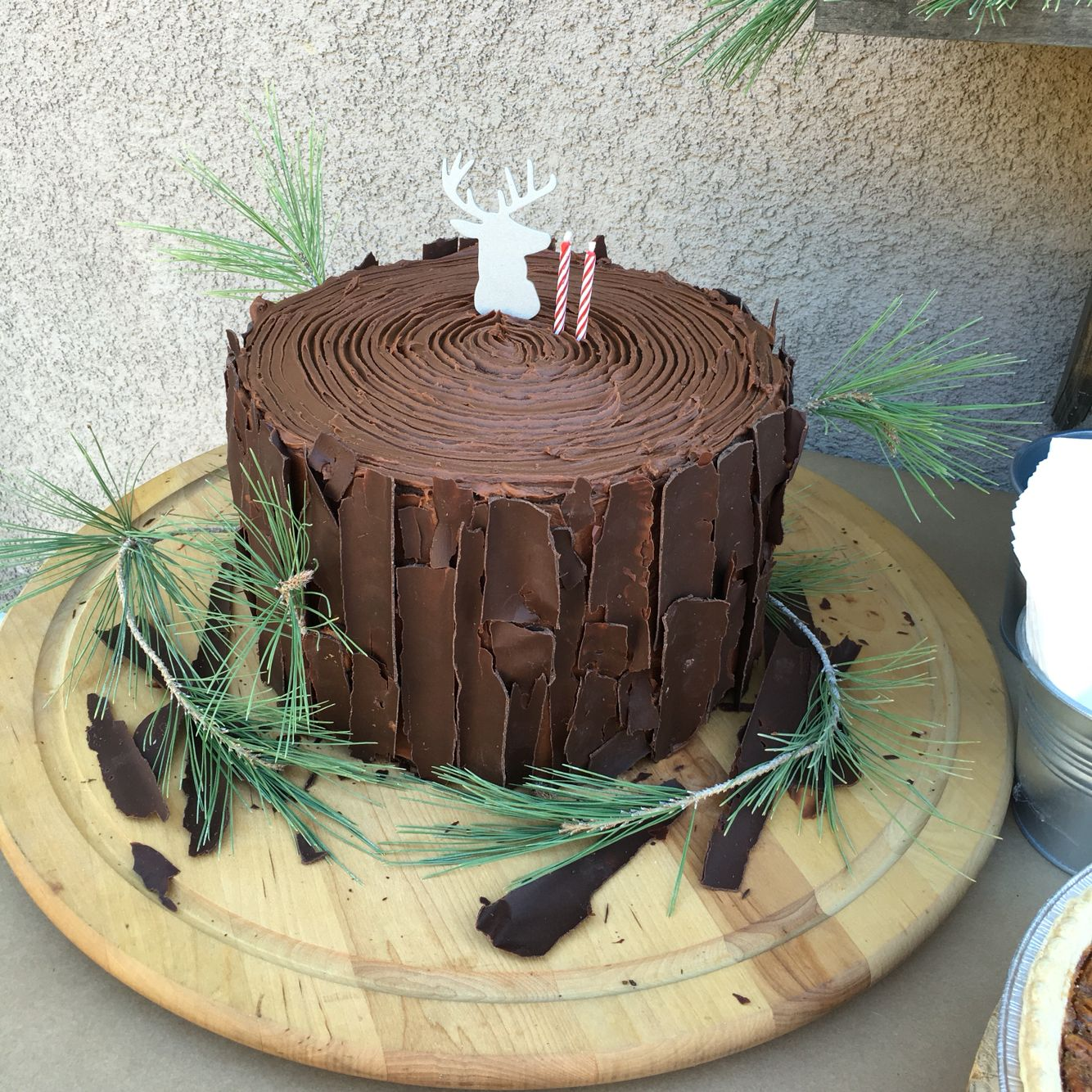 Tree Stump Cake For My 2yrs Old Nephew. Lumber Jack Party