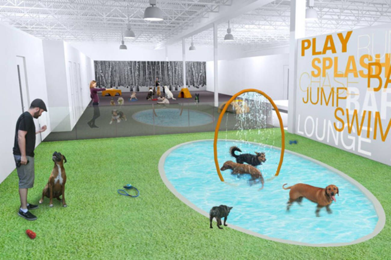 Finally Toronto Gets A Dog Hotel Fit For The Most Pampered Of Pooches Description From Blogto Com I Searched For This Dog Hotel Luxury Dog Dog Daycare Design