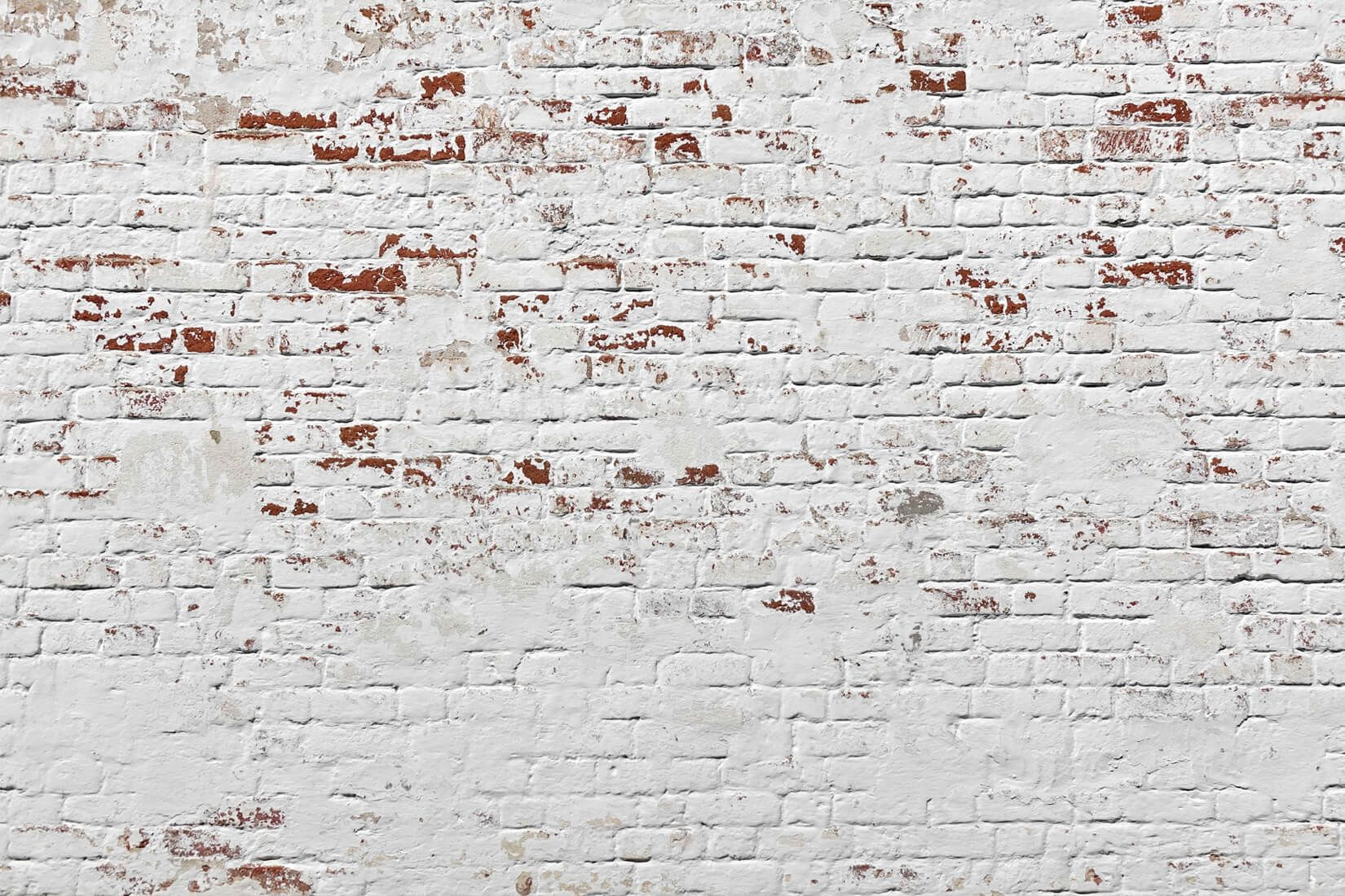 White Warehouse Brick Wall Mural Part 56