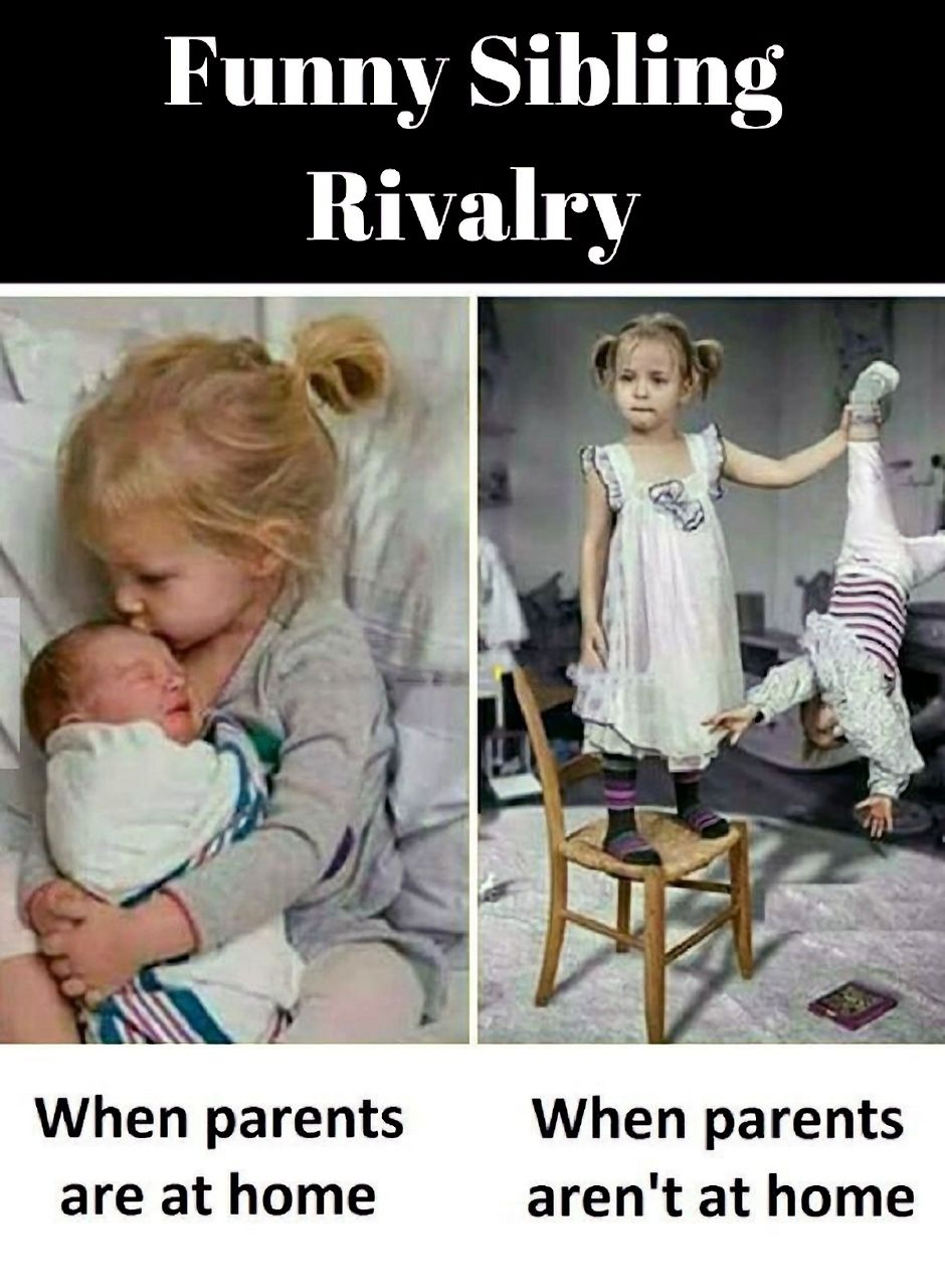 Funny Sibling Rivalry Funny Sibling Pictures Jokes Images Funny Babies