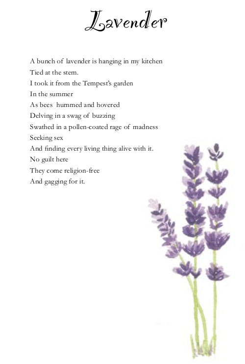 A Sweet Poem About Lavender