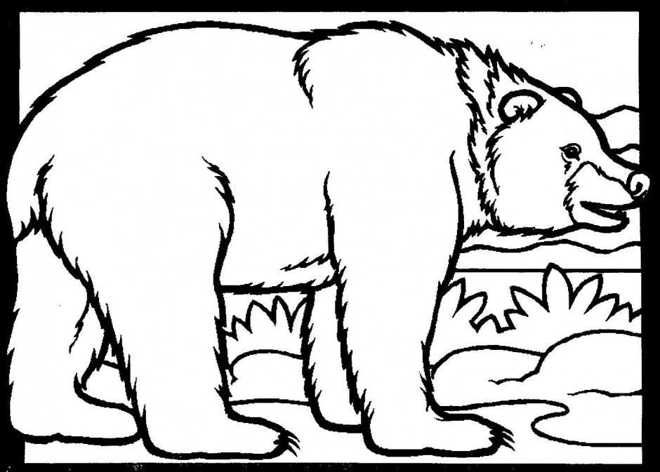 Coloring Pages Of A Black Bear. Black Bear Coloring Page ClipArt Best 41054 Pages