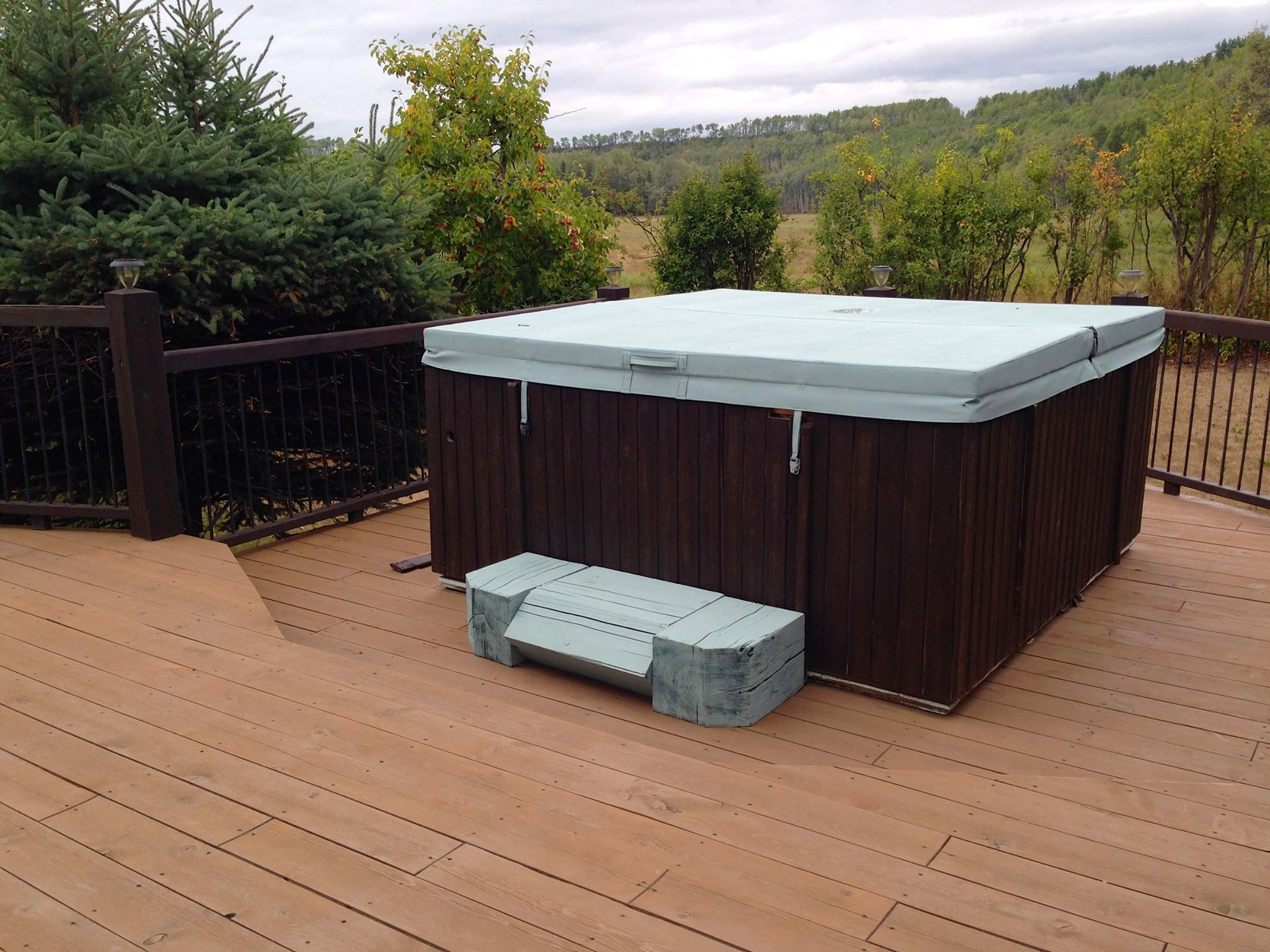 Chalk Paint™ is for outdoors too! Vinyl hot tub cover and step ...