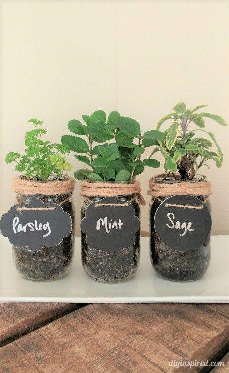 DIY Mason Jar Herb Garden Instructions - DIY Inspired