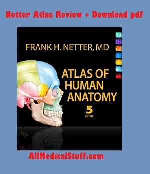 Want To Learn Human Gross Anatomy If Yes Then Download Netter Atlas Of
